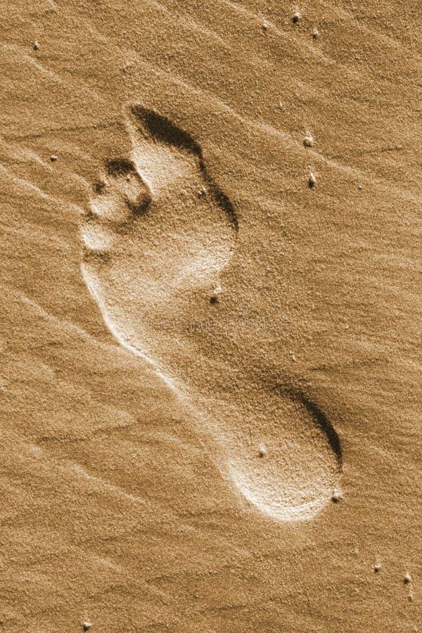 Free Beach Footprint Royalty Free Stock Photography - 14387727