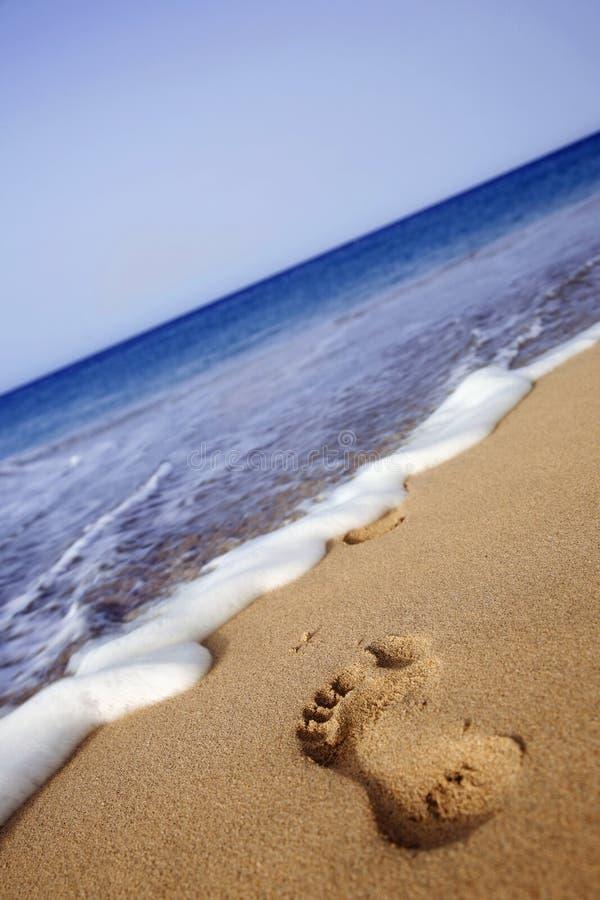 Free Beach Footprint Royalty Free Stock Photos - 2827728