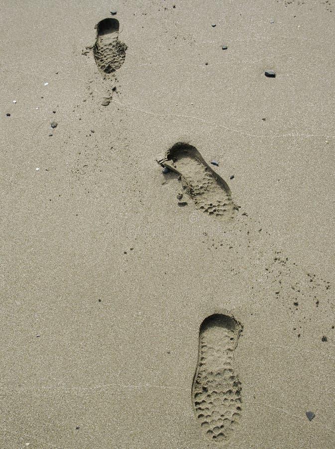 Beach Footprints Free Stock Image