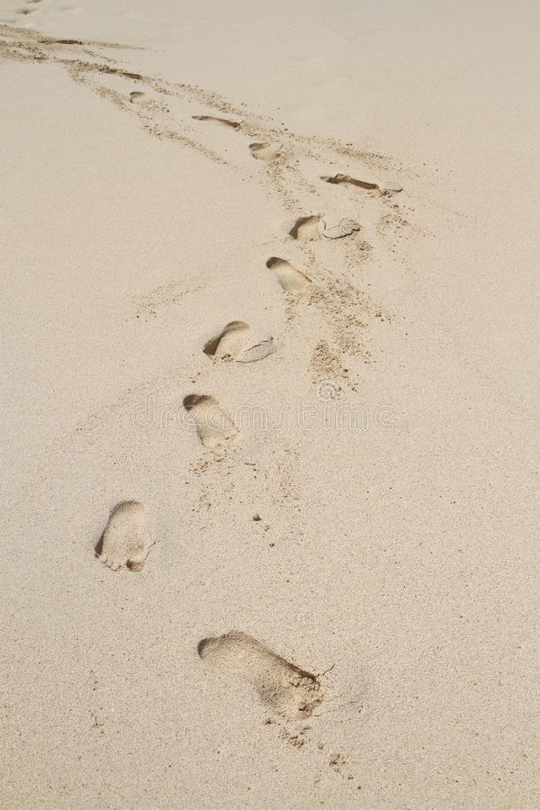 beach footprints arkivbilder