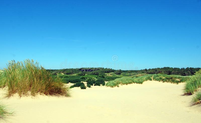 Beach at formby merseyside with dunes covered in marram grass and vegetation with forest landscape visible in the distance stock photos