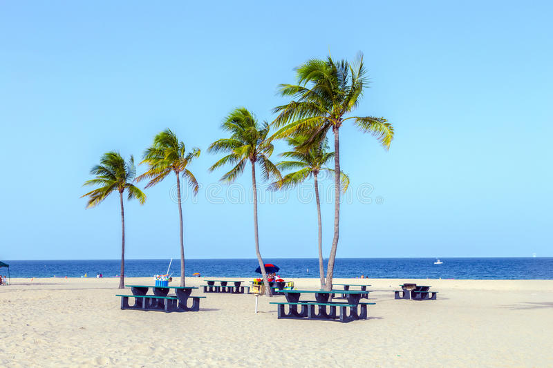 Beach in Fort Lauderdale royalty free stock images