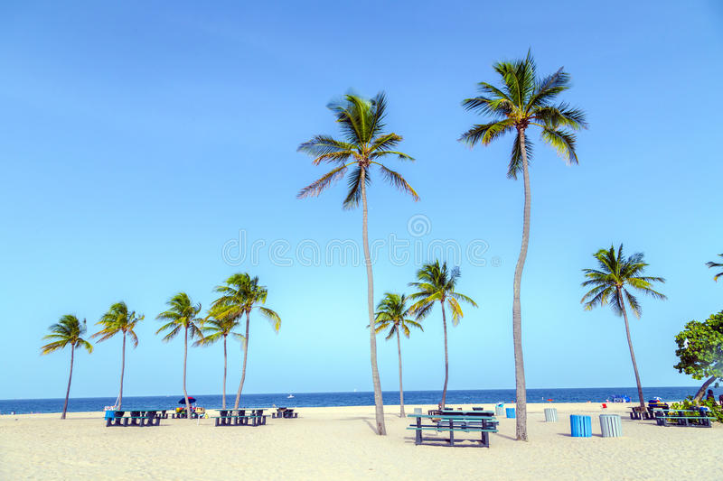 Beach in Fort Lauderdale stock photography
