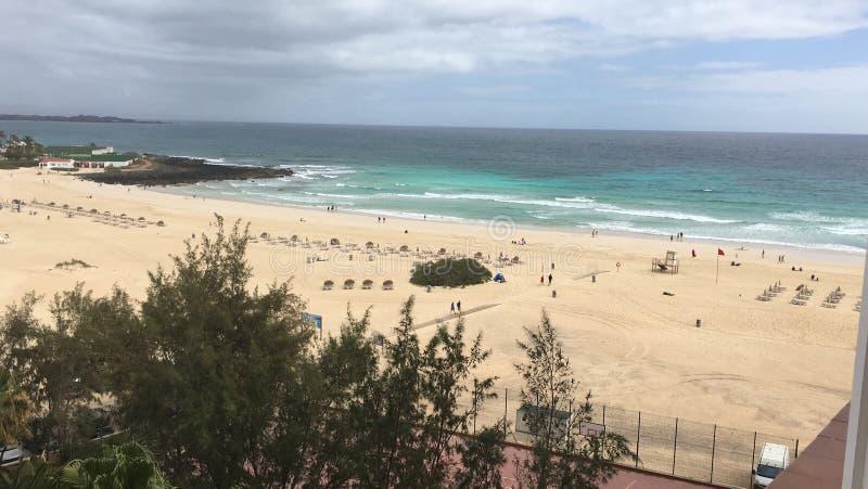 beach fuerteventura royalty free stock photos