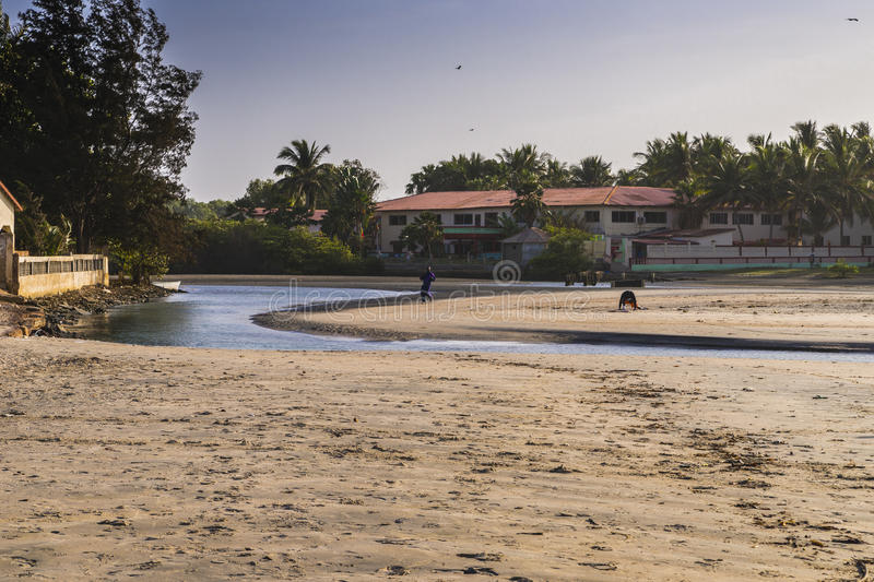 Beach in Gambia royalty free stock photography