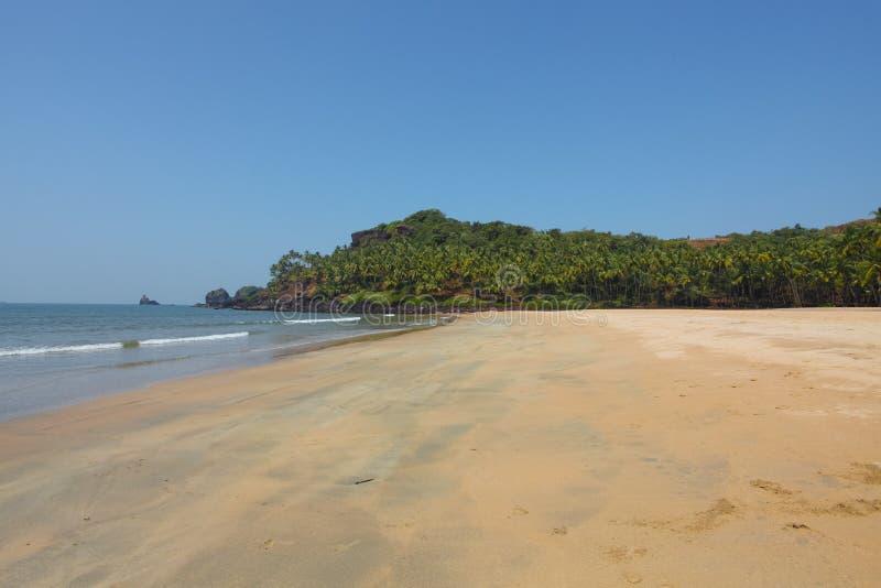 Beach in goa stock image