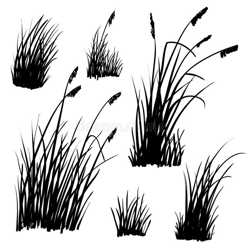 Free Beach Grass Silhouettes On White. Royalty Free Stock Photos - 189095078