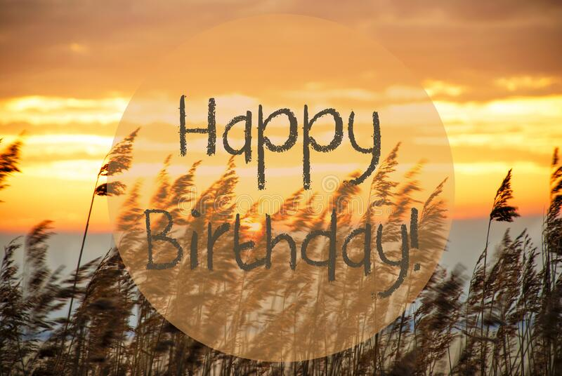 1 554 Happy Birthday Beach Background Photos Free Royalty Free Stock Photos From Dreamstime