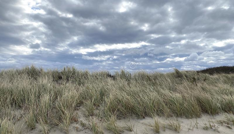 Beach Dunes in Cape Cod, Massachusetts royalty free stock photo