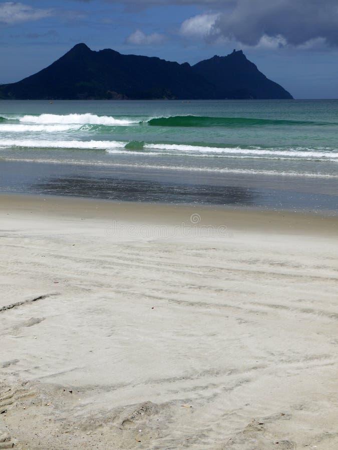 Download Beach: green wave stock photo. Image of green, ocean - 22517362