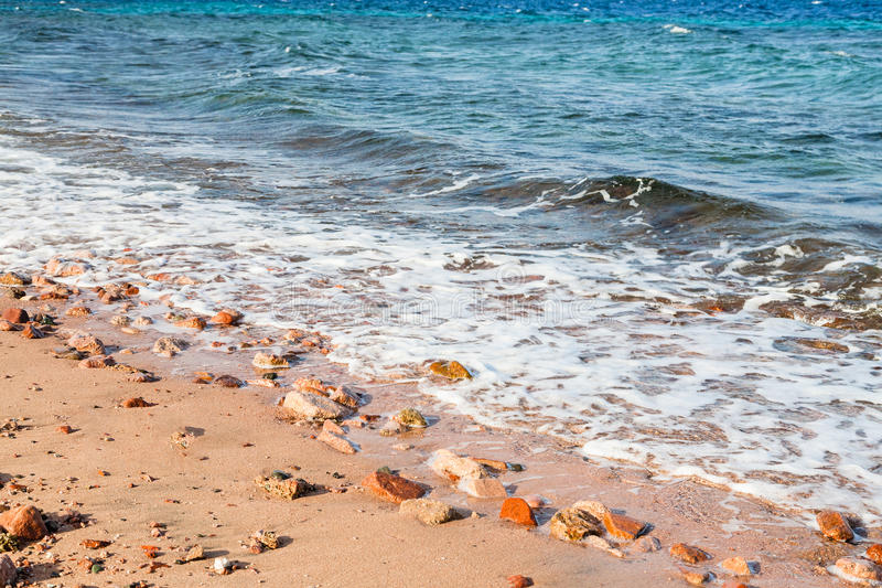 Beach of Gulf of Aqaba on Red Sea in morning royalty free stock photos