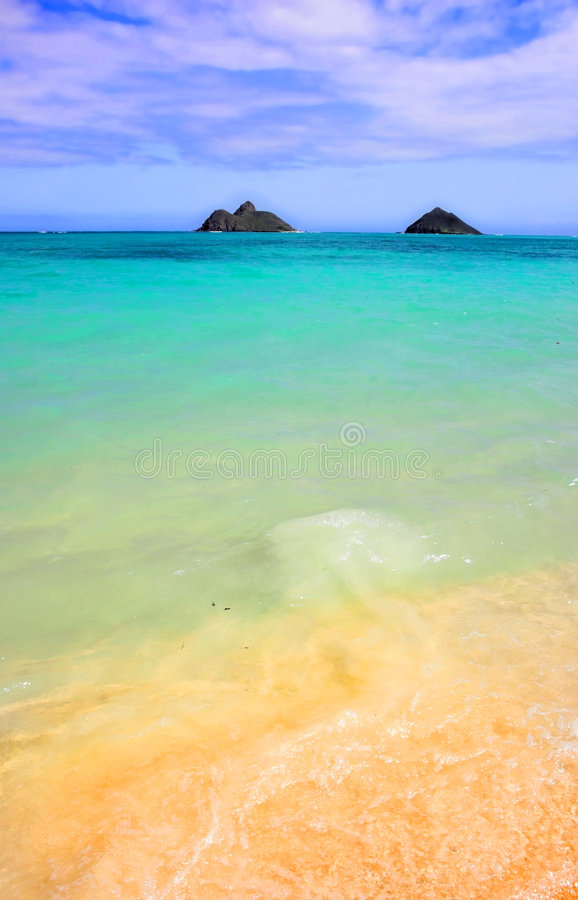 Beach of Hawaii royalty free stock images