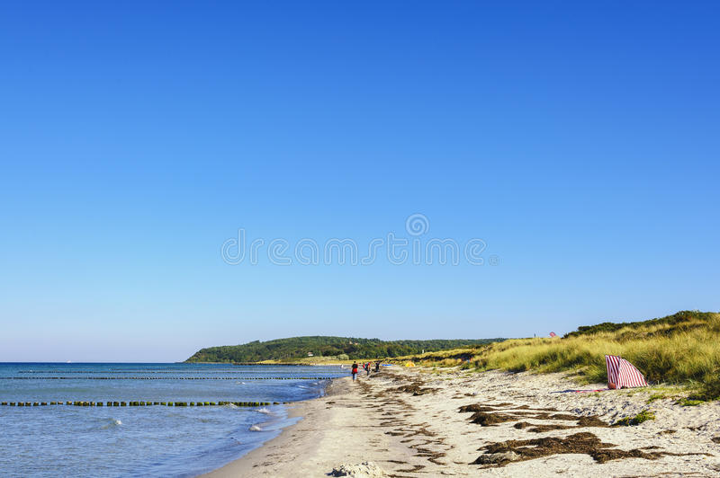 Beach of Hiddensee. West beach to the north of the island Hiddensee royalty free stock photos