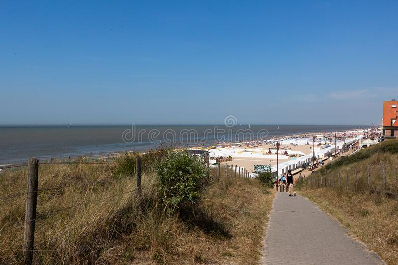 Dunes beach North Sea, Blankenberge, Belgium royalty free stock photography