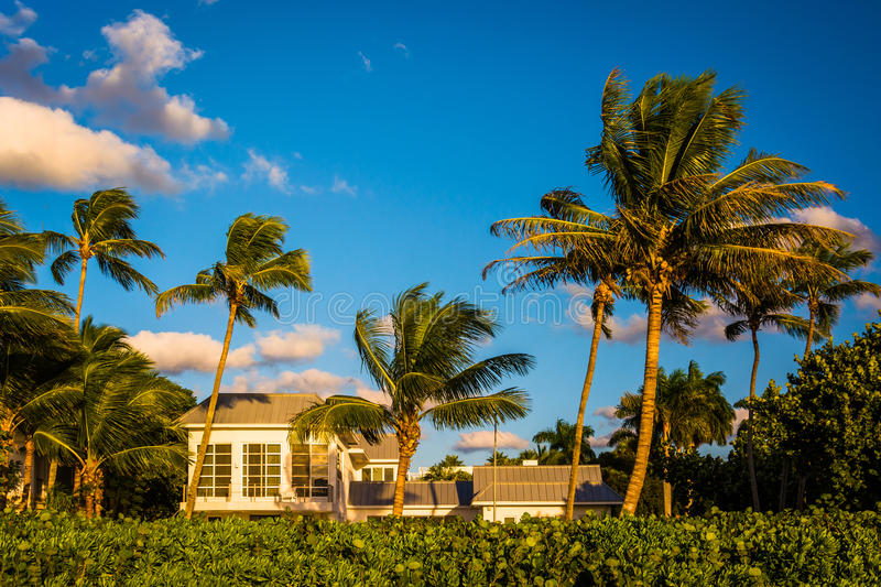 Beach house and palm trees in Naples, Florida. stock images