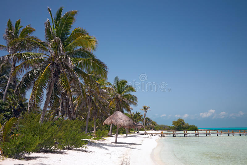 Beach On The Isla Contoy Stock Images