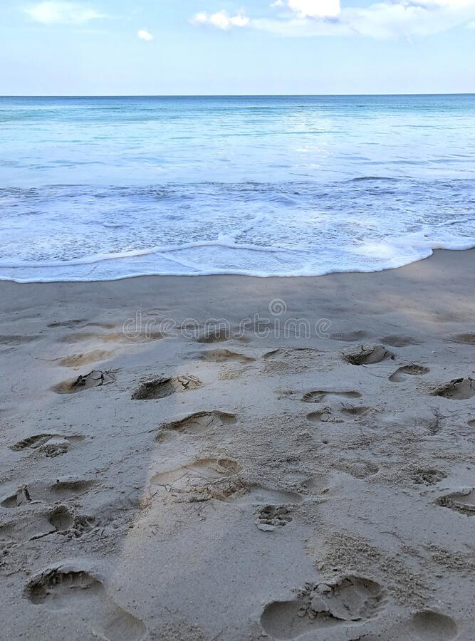 Beach on the island of Phuket in Thailand.  stock images