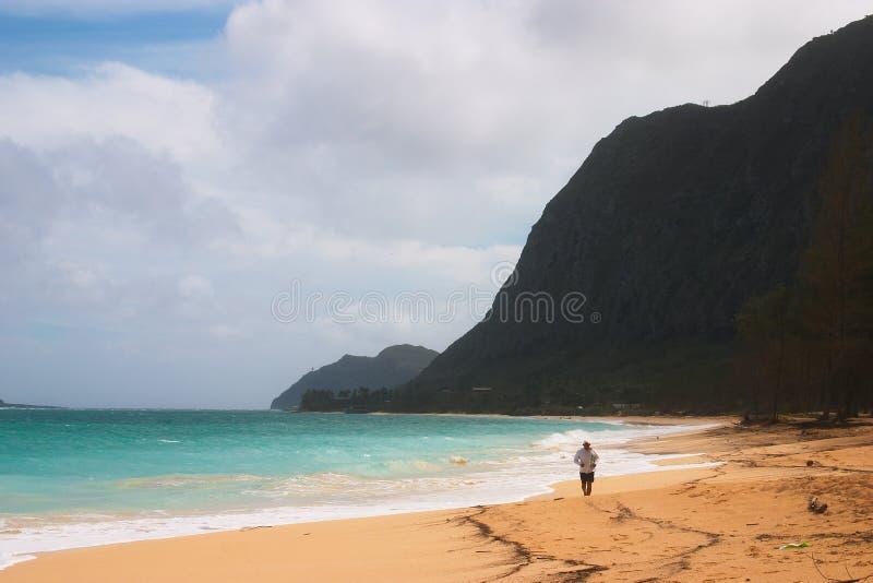 Beach Jogger royalty free stock photos
