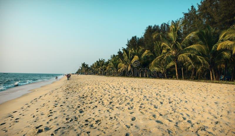 On the beach of kerala stock photography