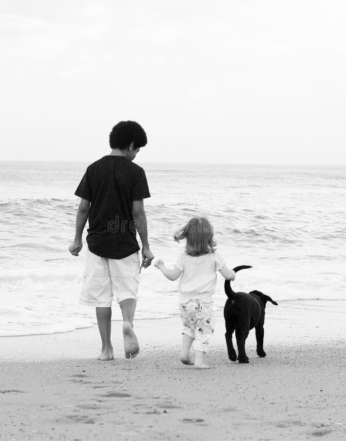 Beach Kids royalty free stock photos