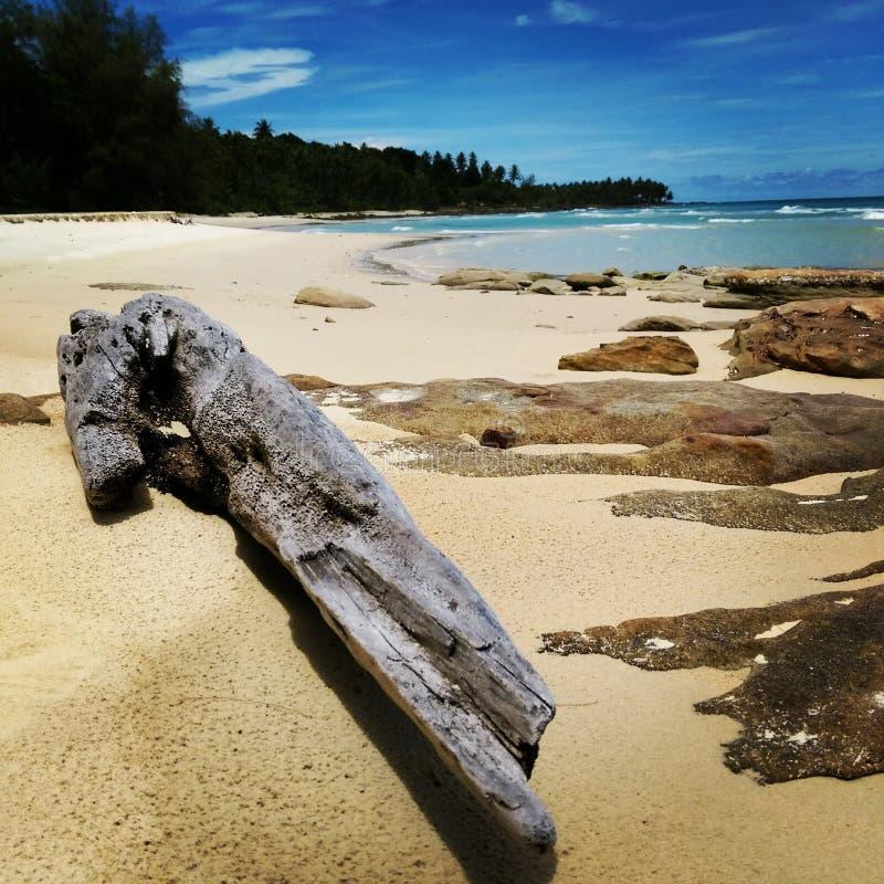 beach of koh kood island in thailand royalty free stock image