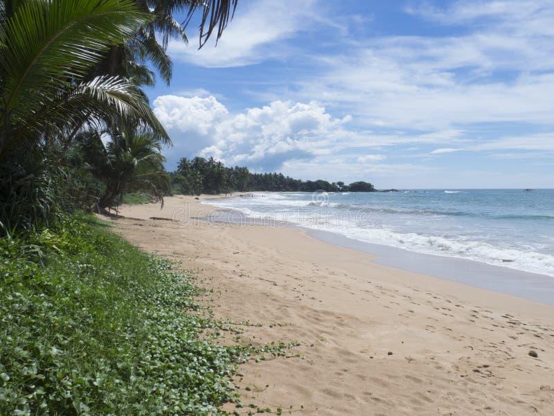 Beach in Kosgoda, Sri Lanka royalty free stock images