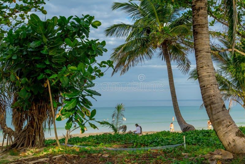 Download Beach Landscape In Phuket Stock Photo - Image: 83724996