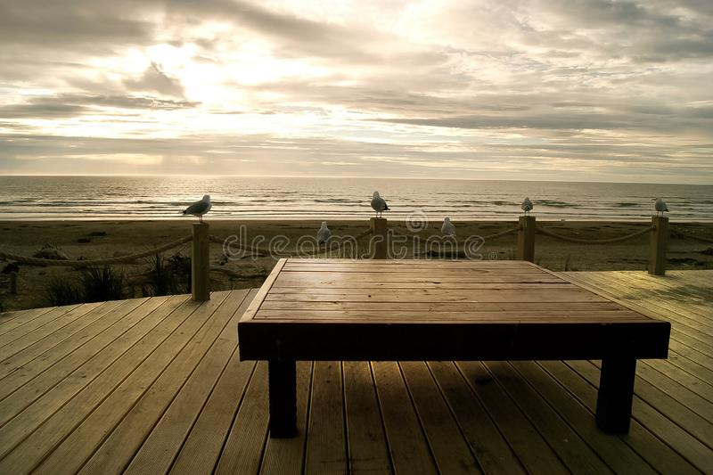 Beach landscape with table and logs in Napier, Hawkes Bay, New Zealand with  wood white clouds in background and seagulls watching stock photo