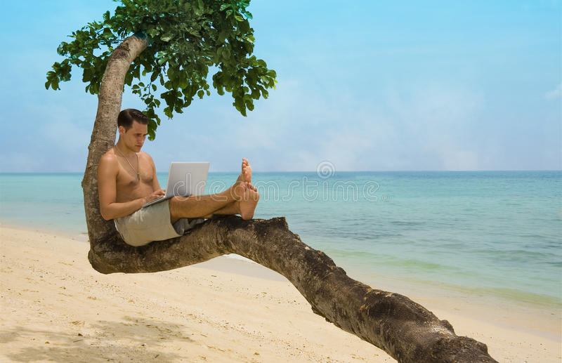 Beach laptop vacation. Attractive man with laptop seated in a tree on a tropical beach royalty free stock photo