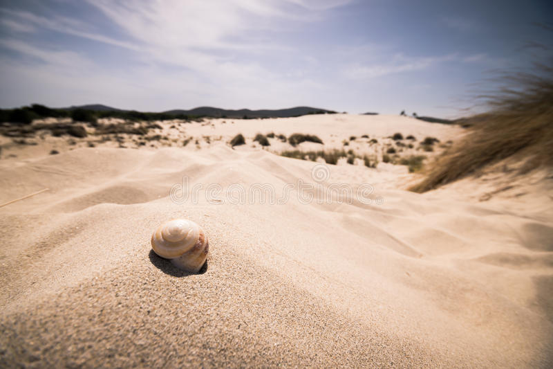 Download The Beach Of Le Dune, Porto Pino, Sardinia, Italy. Stock Image - Image: 83724053