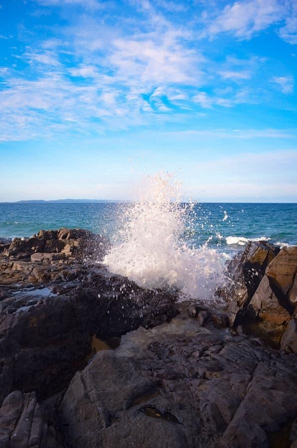 Beach Life stock photo
