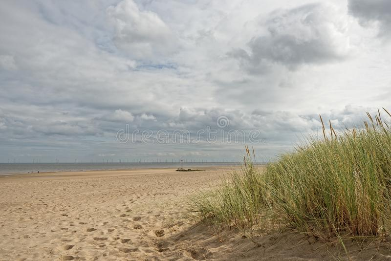 Beach in Lincolnshire,UK. A beach with Marram Grass in Lincolnshire,UK stock image