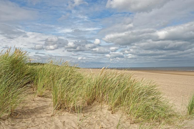 Beach in Lincolnshire,UK. A beach with Marram Grass in Lincolnshire,UK stock photo