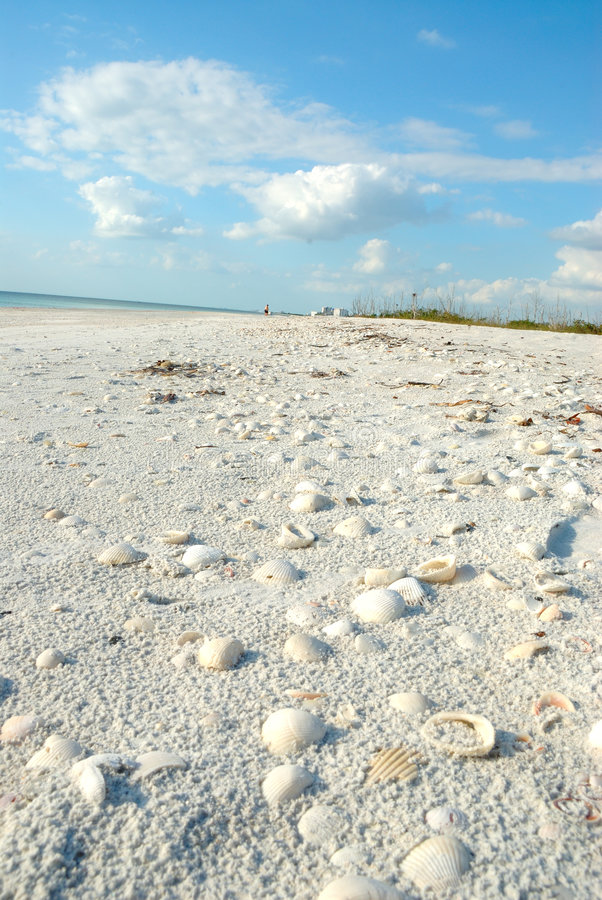 Beach at Lovers Key Florida USA. The pure white beach sand is littered with shells at Lovers Key in Florida, USA stock photography
