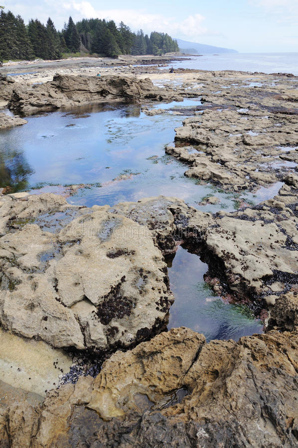 Beach in low tide stock photography