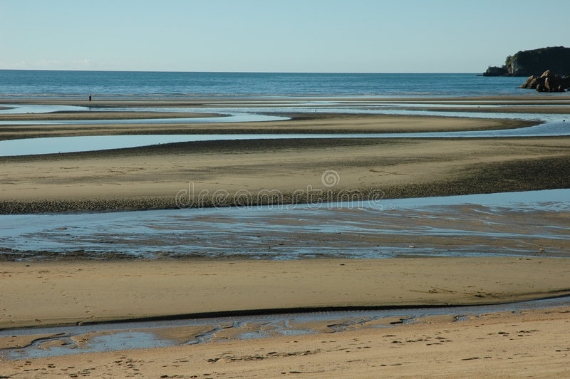 Download Beach at low tide stock photo. Image of shoreline, tide - 306844