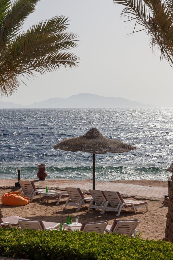 Beach at the luxury hotel, Sharm el Sheikh, Egypt. The beach at the luxury hotel, Sharm el Sheikh, Egypt stock photography