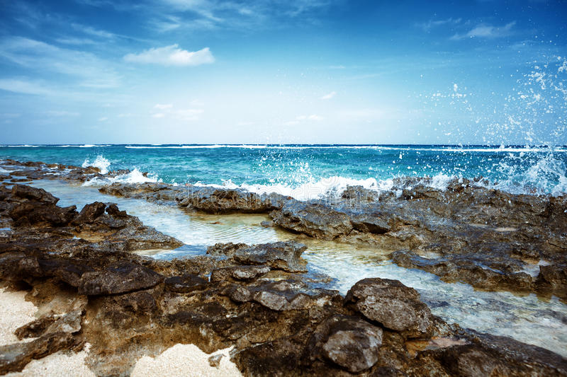 Beach at Maldives island Fulhadhoo with white sandy beach and sea and stones and rocks, corals. Scenic view of Wild idyllic Beach at Maldives island Fulhadhoo stock photo