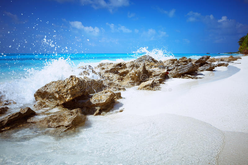 Beach at Maldives island Fulhadhoo with white sandy beach and sea and stones and rocks. Scenic view of Wild idyllic Beach at Maldives island Fulhadhoo with white stock photography