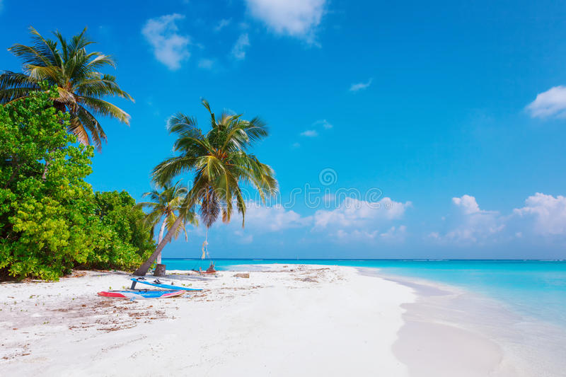 Beach at Maldives island Fulhadhoo with white sandy idyllic perfect beach and sea and curve palm. Scenic view of Wild idyllic Beach at Maldives island Fulhadhoo royalty free stock image