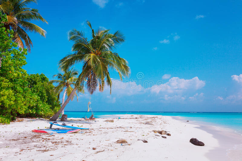 Beach at Maldives island Fulhadhoo with white sandy idyllic perfect beach and sea and curve palm. Scenic view of Wild idyllic Beach at Maldives island Fulhadhoo royalty free stock photo