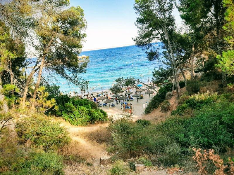 Beach in Mallorca. Bluewater, sea, landscape, summer stock photo