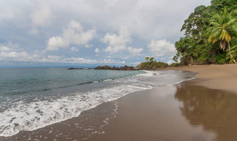 Beach in Manuel Antonio National Park. Beach of Manuel Antonio National Park in Costa Rica stock images