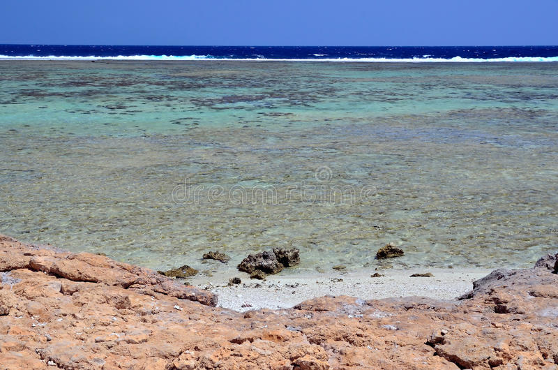 Download Marsa alam stock photo. Image of africa, palms, floor - 29959428