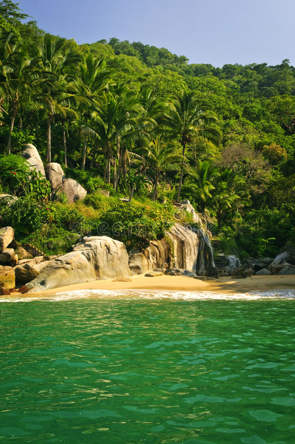 Beach in Mexico royalty free stock photos