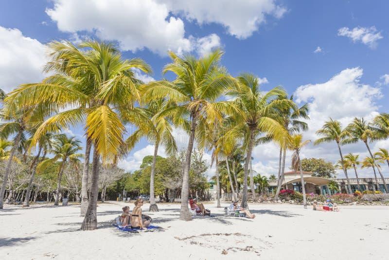 Beach in Miami, Florida. MIAMI, USA - MAR 10, 2017: Matheson Hammock Park beach in Miami, Florida, United States royalty free stock images