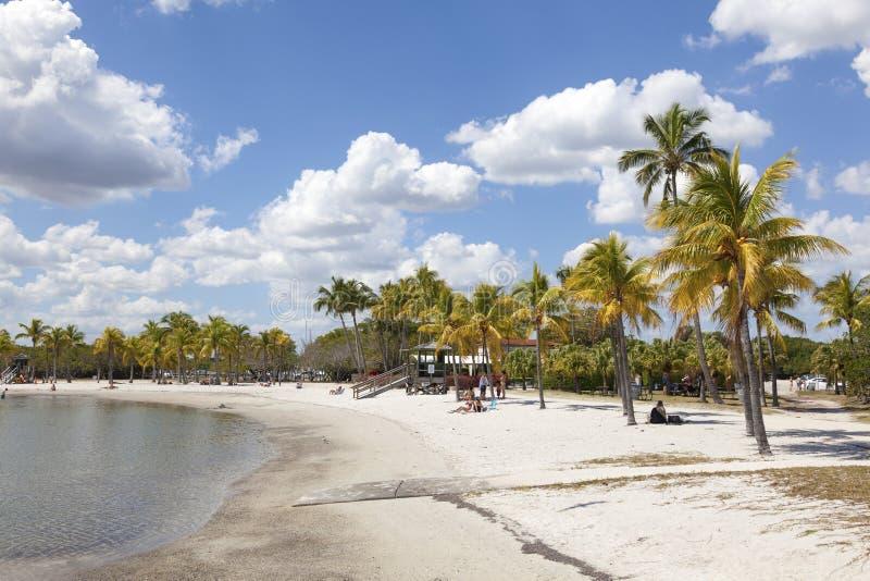 Beach in Miami, Florida. MIAMI, USA - MAR 10, 2017: Matheson Hammock Park beach in Miami, Florida, United States royalty free stock photo