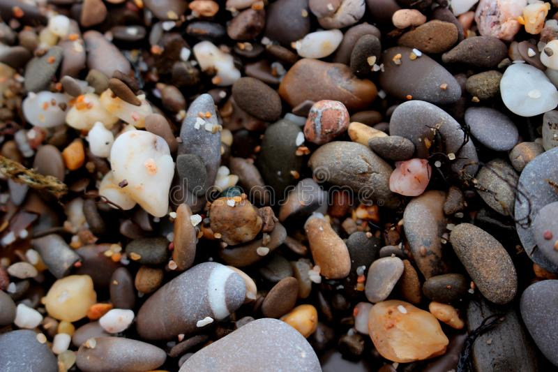 Beach multicolored pebbles royalty free stock images