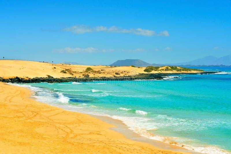 Beach in Natural Park of Dunes of Corralejo in Fuerteventura royalty free stock photos