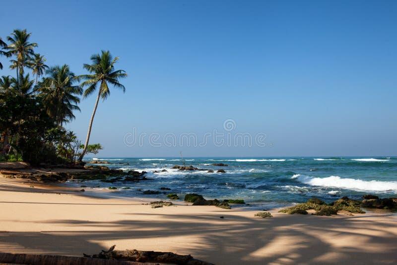 The beach near Ambalangoda, Sri Lanka. Palm trees and rocks stock photo